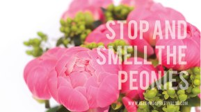 Stop-and-Smell-the-Peonies.jpg